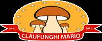 Ciuperci din flora spontană și Fructe de pădure