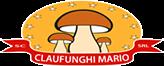 Claufunghi Mario SRL